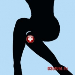 силуэт женской коленки
