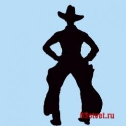 мужчина в ковбойском костюме
